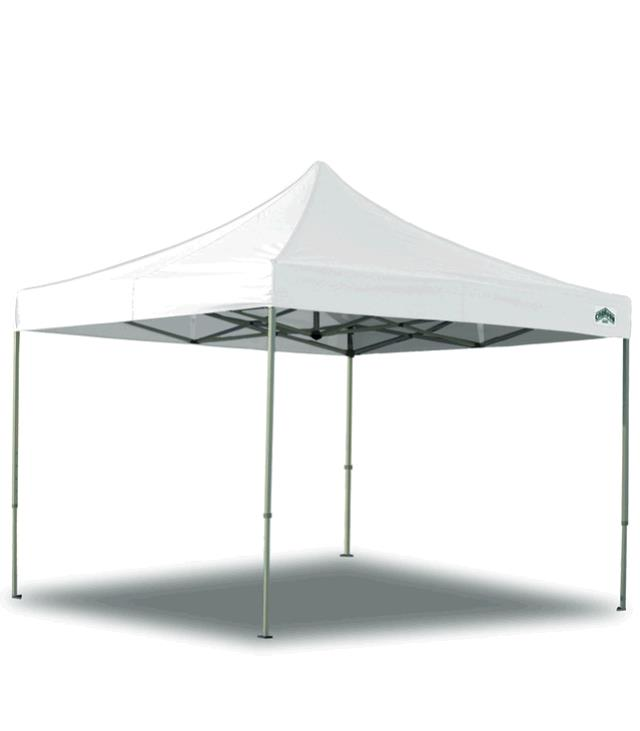 Where to find CANOPY EZ-UP 10 x10  WHITE in Tacoma